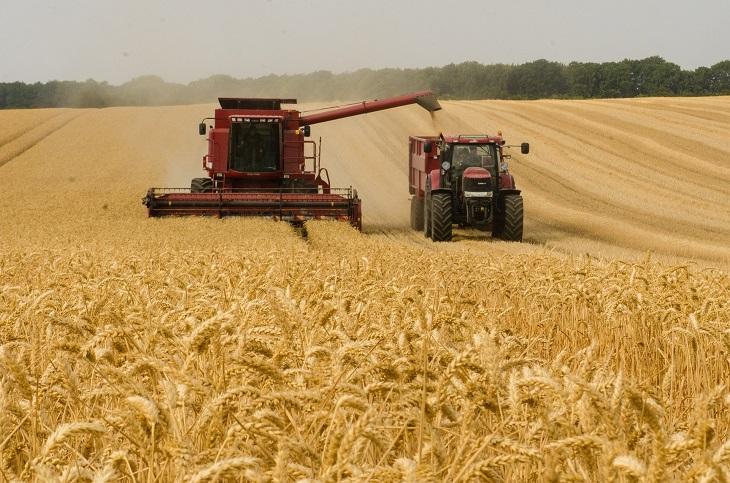 Фото рынок зерноуборочных комбайнов