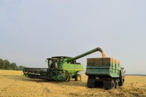 Фото анализ рынков сельского хозяйства