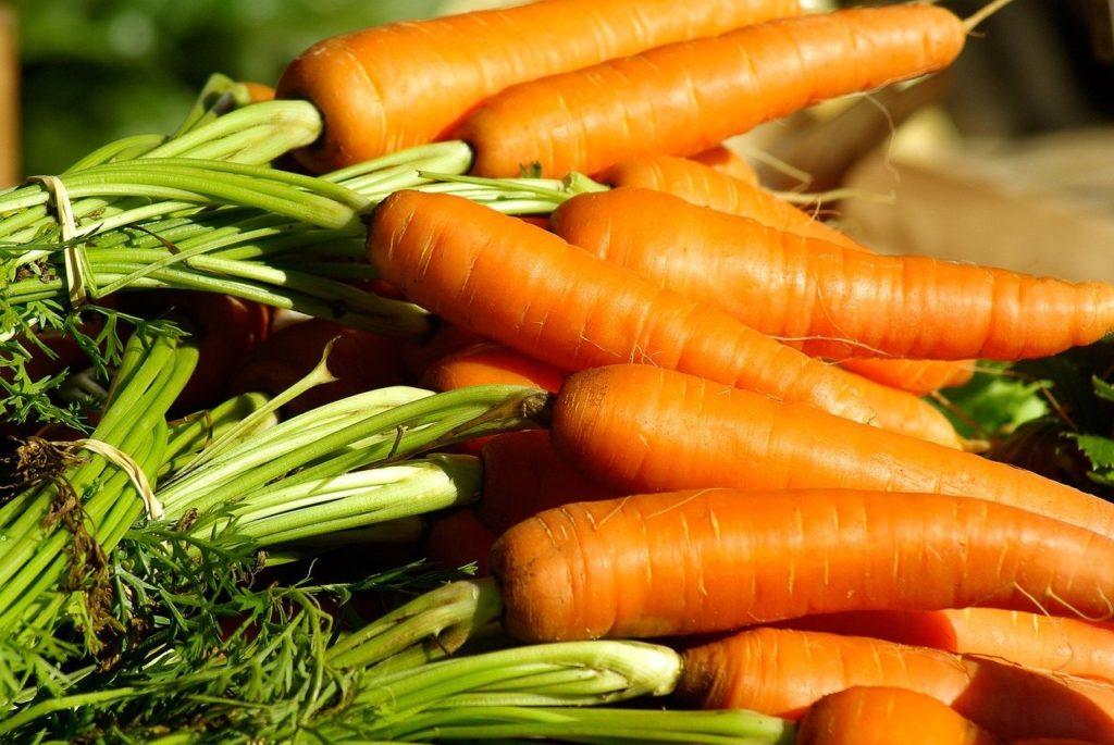 Фото рынок моркови открытого грунта