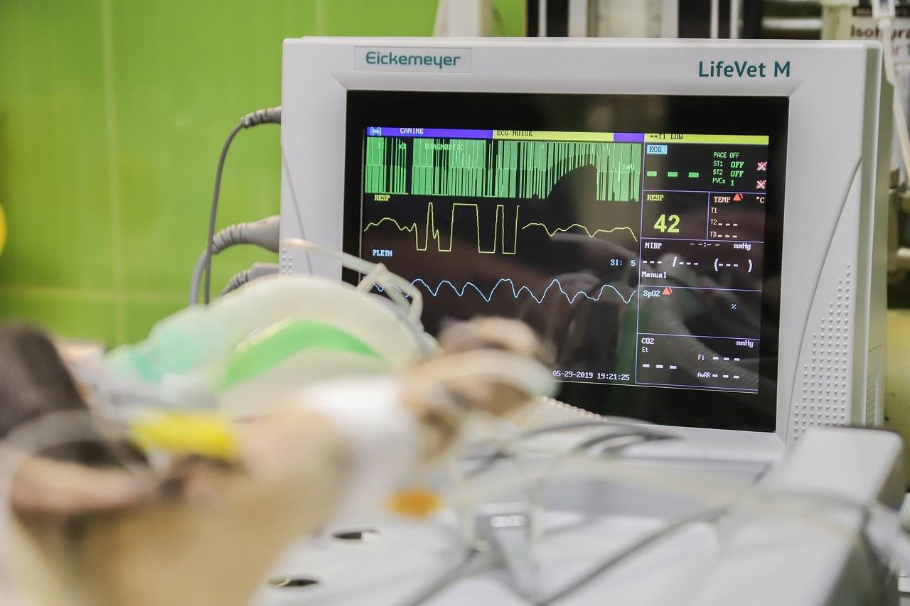 Фото анализ рынка систем контроля распределения температуры