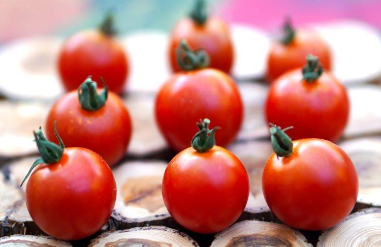 Фото анализ рынка томатной пасты