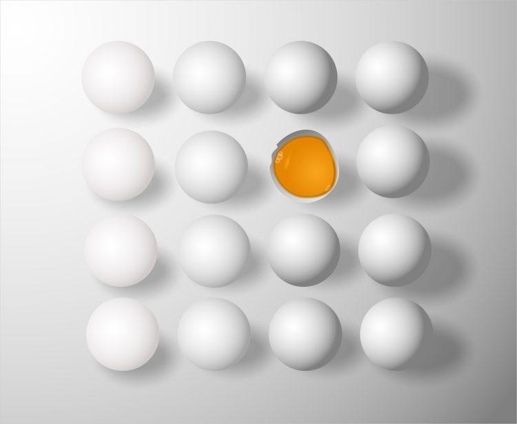 Фото рынок племенного яйца