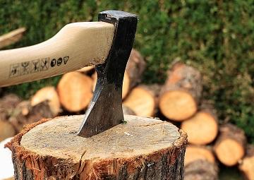 Фото анализ рынок лесной продукции