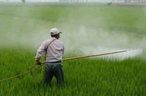 Фото анализ рынка пестицидов