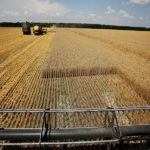 Фото маркетинговое исследование рынка пестицидов Казахстана