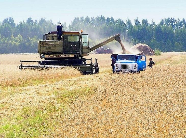 Фото анализ советского сельского хозяйства