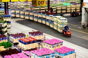 Фото анализ рынка транспортных компаний по перевозке цветов